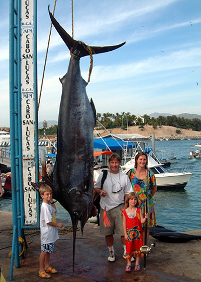 Cabo san lucas vacation for Marlin fishing cabo